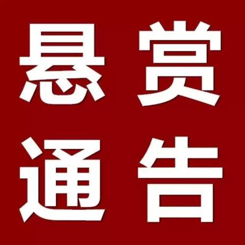 """山东高院悬赏2600万查找""""老赖""""财产 涉北大青鸟等公司"""