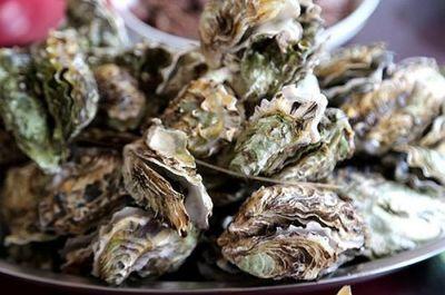 山东冬季海鲜市场价格走高 牡蛎上涨最多供不应求