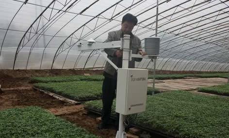 """聊城开展""""互联网+气象"""" 每周推出2期设施农业服务专报"""