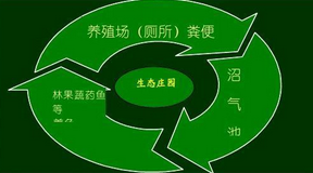 """山东打造农业""""新六产""""新型业态  发展绿色循环经济"""