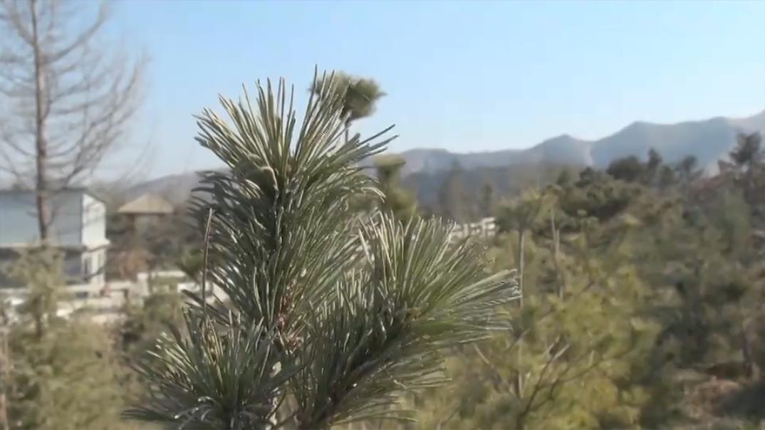 聚焦暖蓝 | 大数据告诉你济南今年的天空有啥大变化