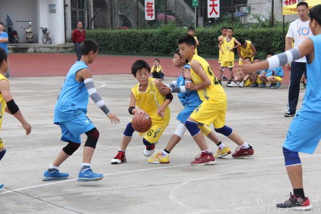 """临沂8所学校获评""""全国青少年校园篮球特色学校"""""""