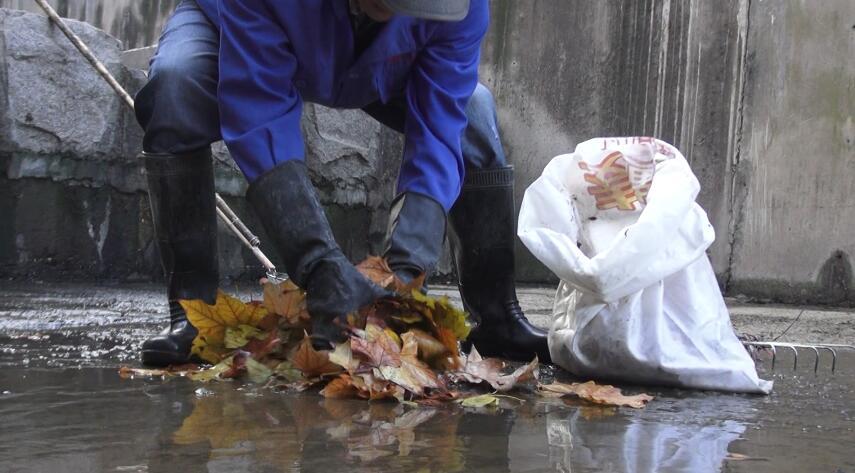 寒冬里的坚守:58岁河道保洁员清理千米河道冰水里泡3小时