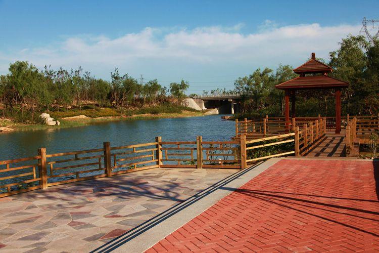 潍坊新增5处市级湿地公园 全市湿地公园达28处