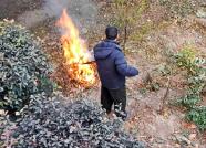 潍坊一小区物业居民楼下烧垃圾 业主:引发火灾谁负责
