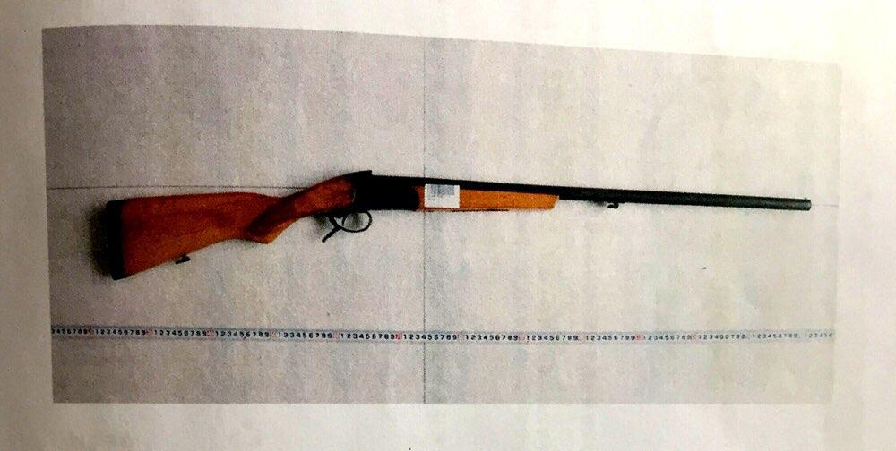 淄博90后女子田间挖野菜捡到猎枪 私藏家中被判管制