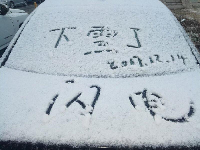 雪景大片来袭!山东多地迎来入冬首雪,美景刷屏朋友圈