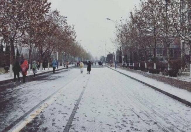初雪忙坏他们!济南上万保洁员上街清雪,605条道路已融雪