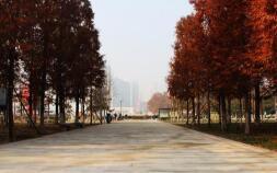 临沂人民广场大修维护与海绵城市建设工程竣工