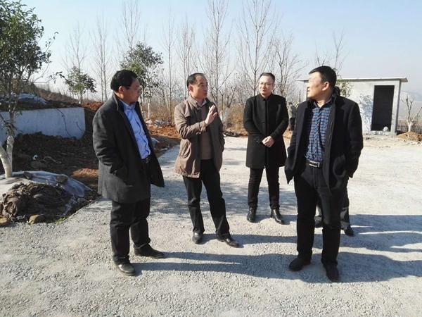 枣庄峄城区督导检查全区6个旅游扶贫项目