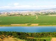 山东农业综合开发项目受益农民203万人