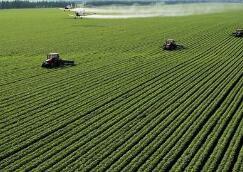 山东:农业综合开发项目受益农民203万人