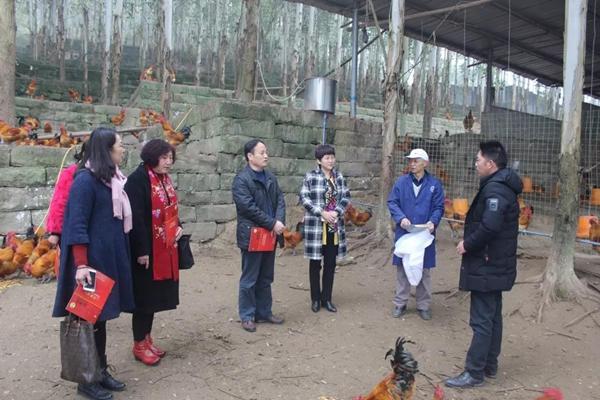 东西扶贫协作!枣庄市妇联赴重庆市丰都县考察对接