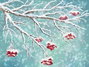 海丽气象吧 | 山东元旦假期有雪,济南或迎2018年首雪!