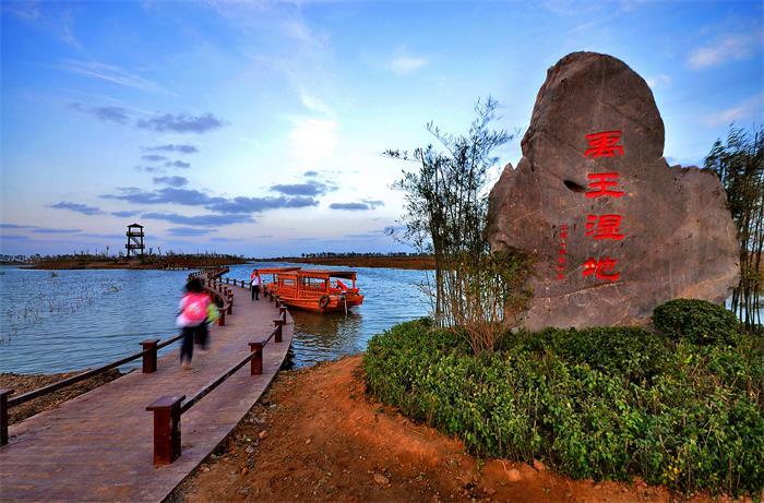 定了!678.55公顷,潍坊禹王国家湿地公园晋升国家级