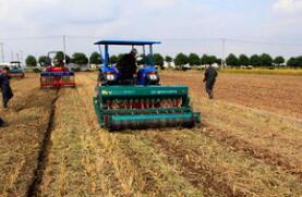 好消息!临沂郯城获评全国农作物生产机械化示范县