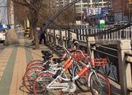 济南4辆共享单车被扔进东泺河 热心市民自发打捞