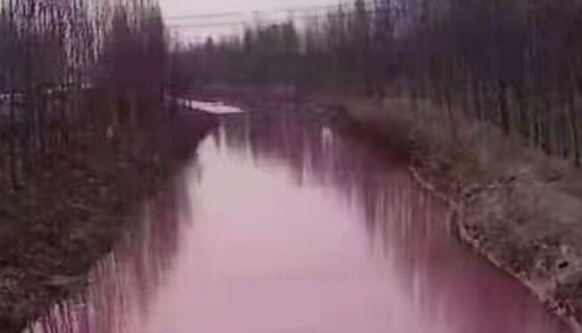 疑因倾倒废物污染 德州宁津一河流河水变成红色