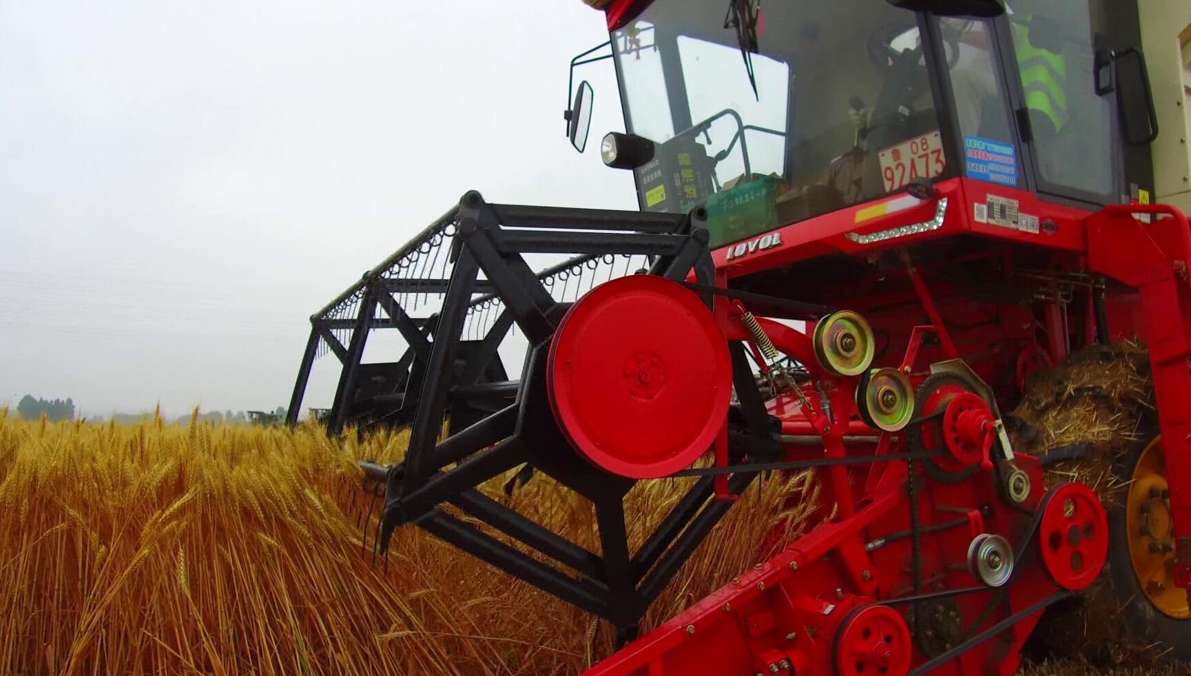 """山东将选拔培育""""农机工匠"""" 六大农作物全程机械化"""