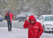 海丽气象吧丨雪在路上!泰安市气象台发布降雪预报