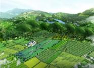 """潍坊晒生态循环农业""""成绩单"""",围观哪些单位上榜?"""