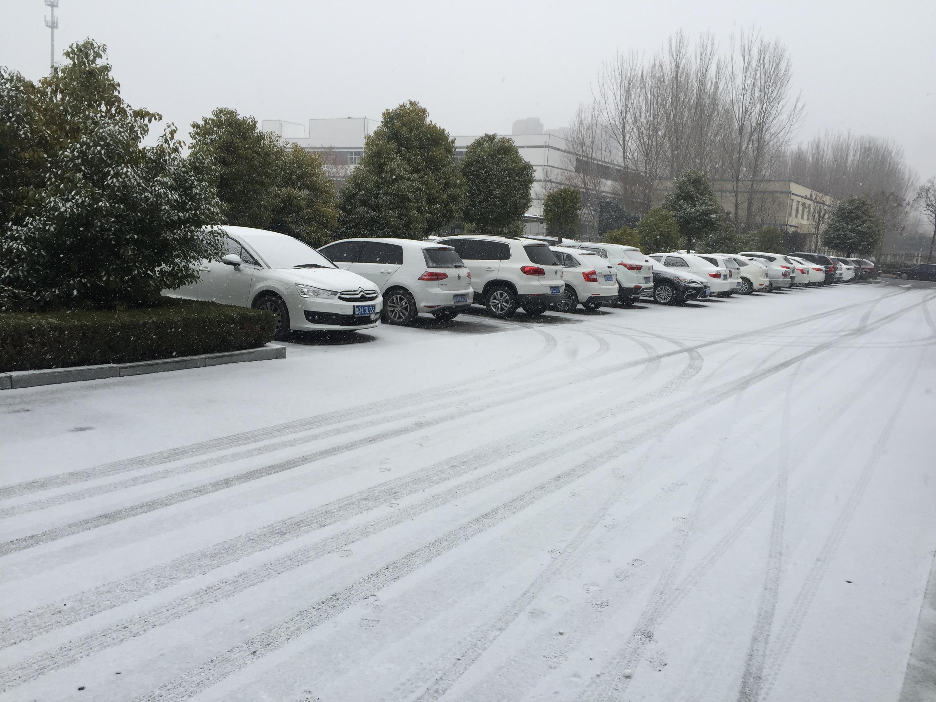 35秒| 临沂2018首雪来了!别羡慕,你们家的都在路上