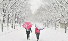 微山昨日降雪量最大9.1毫米 济宁全市平均降雪量3.9毫米