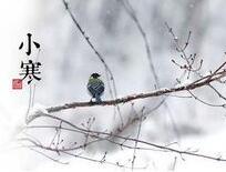 海丽气象吧|小寒节气鲁南地区大雾预警 周末新一轮降雪再袭