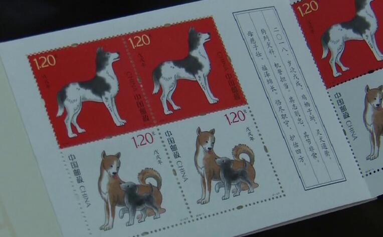 40秒丨《戊戌年》邮票火爆开售 滕州市民凌晨2点排队购买