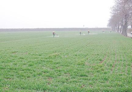 济宁市15个单位荣获省级生态循环农业示范创建单位