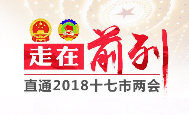 聚焦临沂两会|委员吴楠:保护地方品牌 筑牢沂蒙精神传播载体