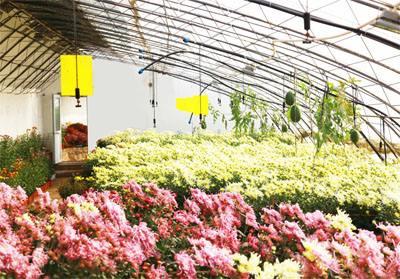 最全名单!山东公布2017年省级生态循环农业示范创建单位