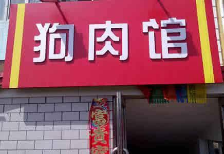 淄博男子光天化日拿绳套狗 称卖给狗肉店换钱花