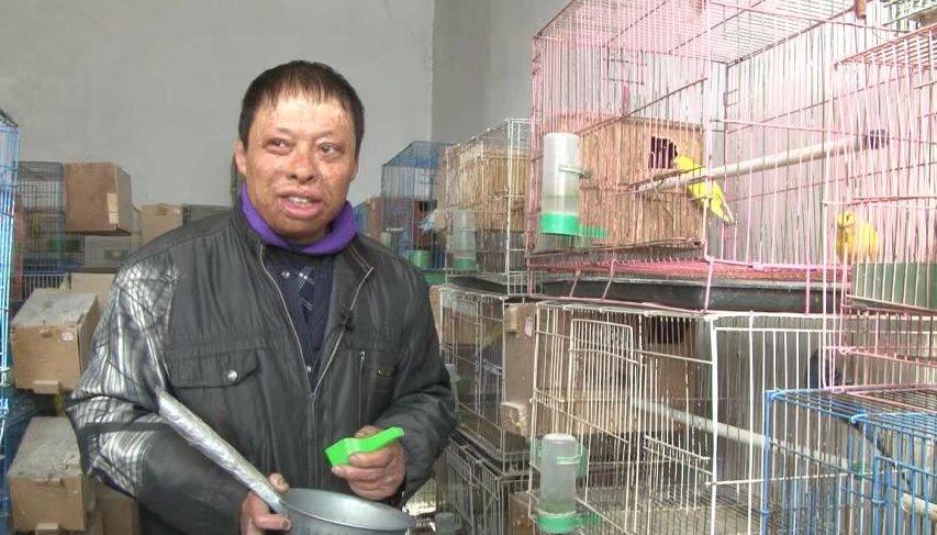 他烧伤后曾欲自杀,如今养鹦鹉年收入十几万,多亏一个人