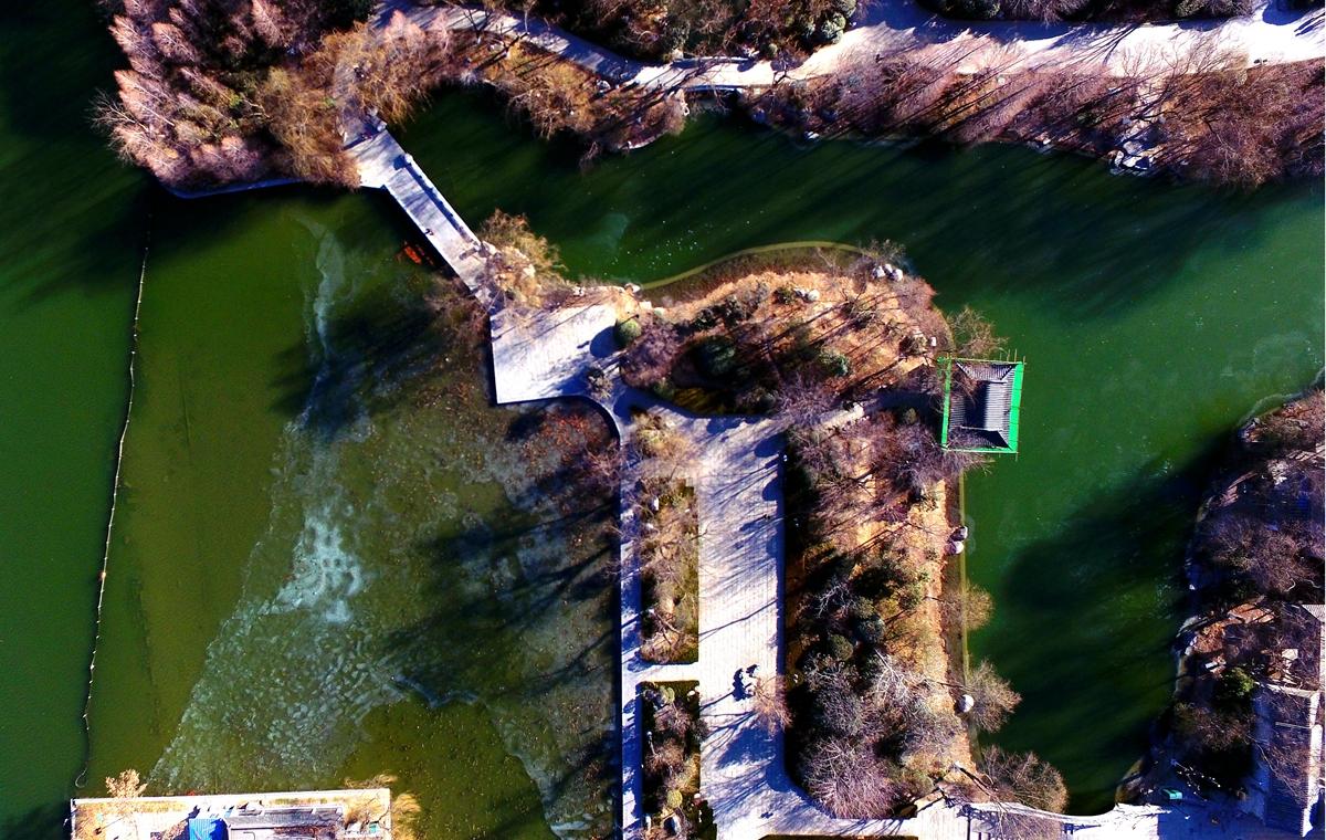 最冷一天!常年常温13℃泉水汇流而成的大明湖结冰啦