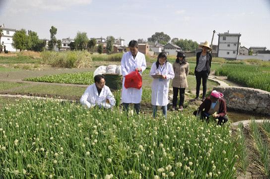 让百姓买的放心!薛城新增15个农产品种植基地追溯监测点