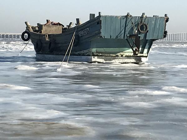 胶州湾提前一周现海冰冰情 未影响养殖及航行安全