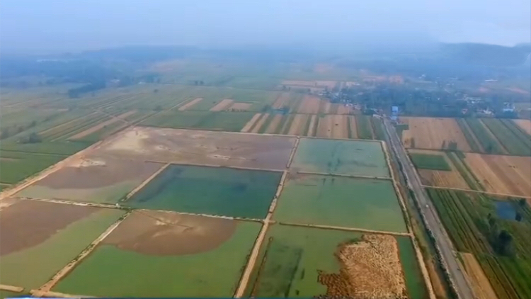 来自基层的声音 | 黄河滩区迁建 托起菏泽鄄城人的安居梦