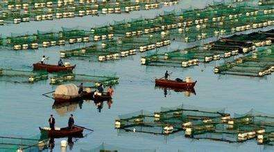 2018年山东将聚焦渔区振兴战略 大力发展渔区生产力