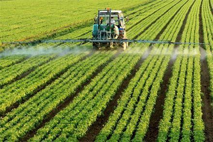 """山东:到2020年建设农业""""新六产""""示范县50个"""