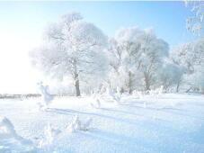 海丽气象吧|山东63县区出现降雪,腊八全省气温将创新低