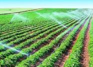 列入地下水超采区综合治理国家试点县 寿光获6000万元资金支持