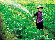 潍坊推进标准化+农业行动 批准发布农业标准规范349项