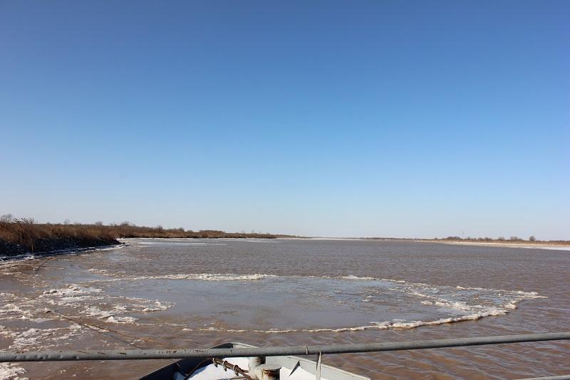 黄河山东段今冬第二次淌凌 淌凌长度近30公里