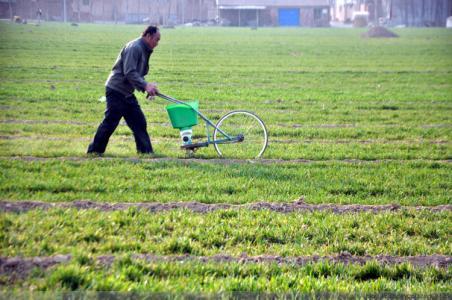 山东全力做好春耕备播工作 确保小麦丰收