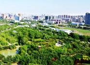 2018年潍坊将新增造林5.62万亩 临朐新增任务居首位