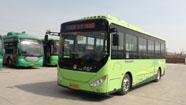 春节期间滨州公交车运营时间表出炉 年初四恢复正常