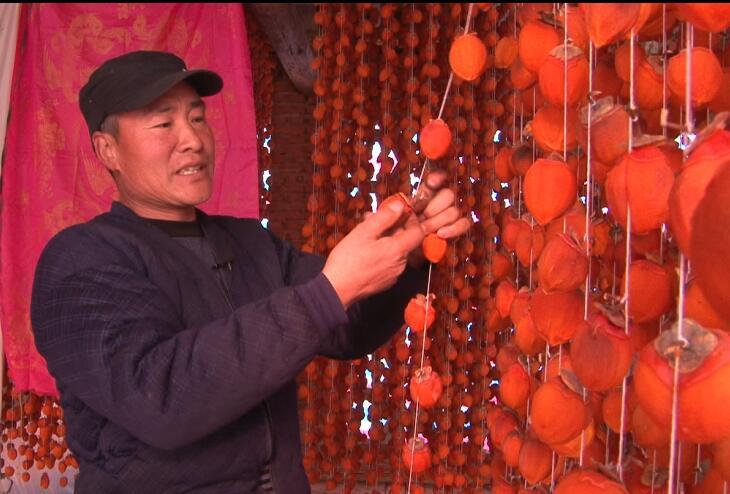 """山东有个""""柿子村"""" 全村卖柿饼一年收入3000万"""