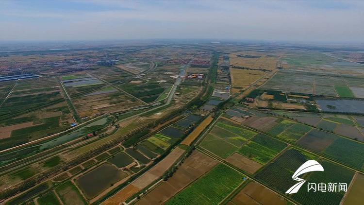 政府工作报告解读|乡村振兴:聚焦农民美好生活新期待