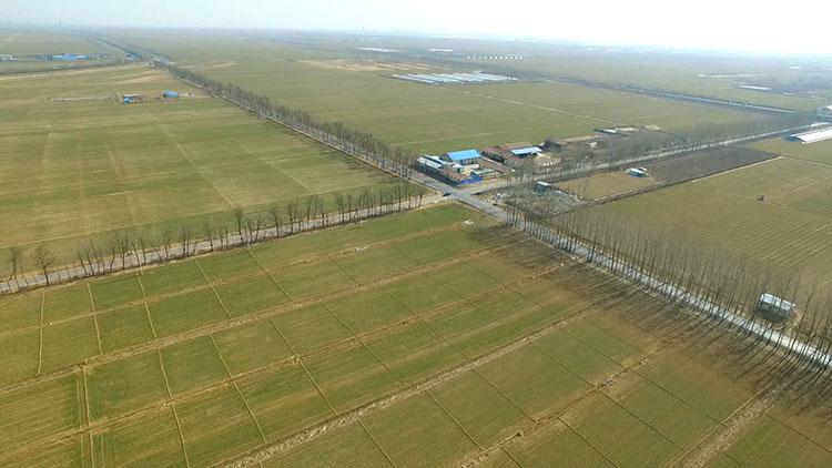 交好答卷④山东:插上科技翅膀 农业走在全国前列